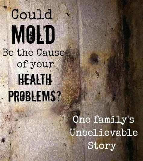 How Do You Detox Your From Black Mold by Could Mold Be The Cause Of Your Health Problems One
