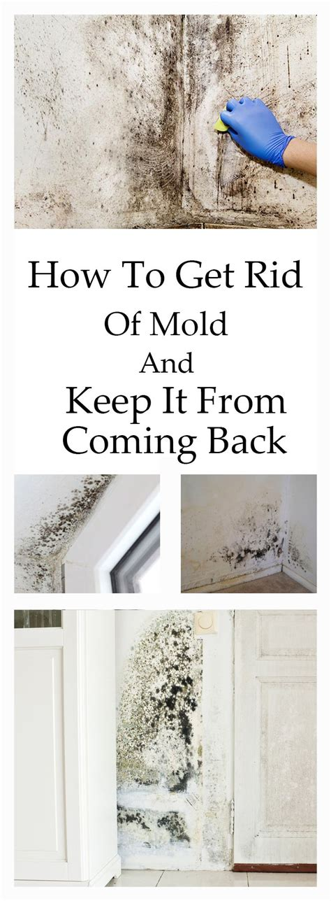 how to get rid of mold on the bathroom ceiling how to get rid of mold and keep it from coming back home
