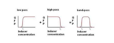 high pass filter digital bandpass filter bandpass filter low pass high pass