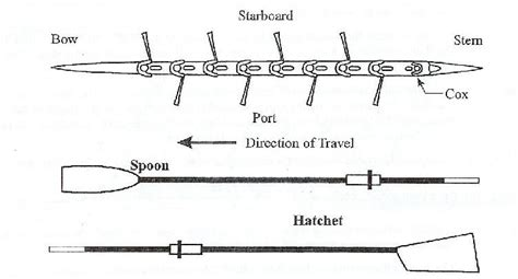 types of boats rowing rowing terms westfield crew