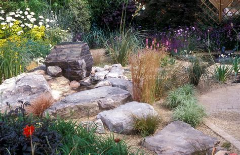 rock for gardens where to buy rock garden with drought tolerant plants large stones