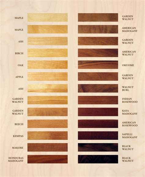 wood color charts    black walnut