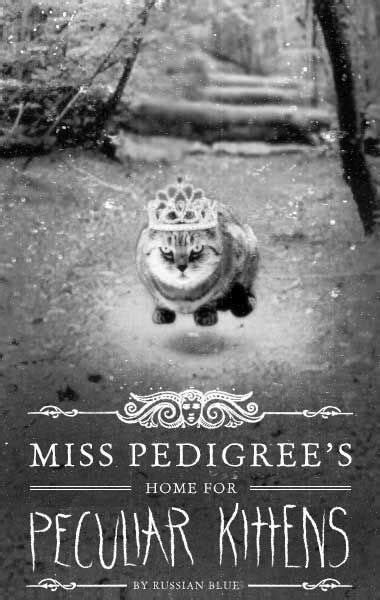 YESSSSS!!! | miss peregrines home for peculiar children