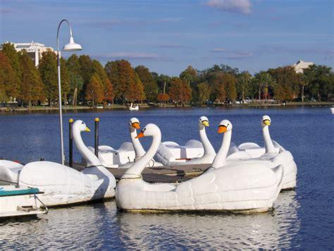 swan pedal boat swan boats swan pedal boats for rent on lake eola joe