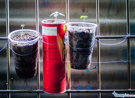 Botol Semprot Bahan Kaleng Tahan Bocor Besar berkebun di rumah memanfaatkan barang bekas