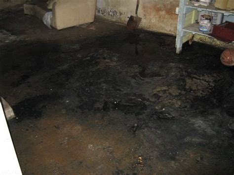 sewage damage in a basement not quot clean quot in eastchester
