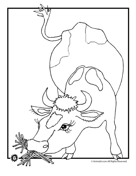 cow farm coloring page farm cow coloring page woo jr kids activities