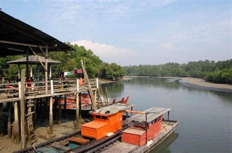 Kerang Sungai realiti kehidupan kerang sungai buluh