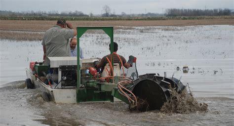 flat bottom mud boat crawfish prediction cajun crawfish blog