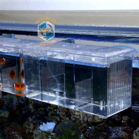 Best Box Arcylic Aquarium External Hang On Small Fish aliexpress buy hang on arcylic box for