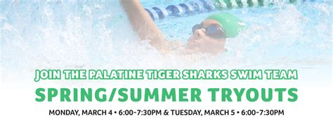 Palatine Park District Recreation Fun For Everyone