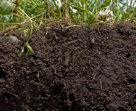 e terreni costruire un terreno origine della vita il di bio