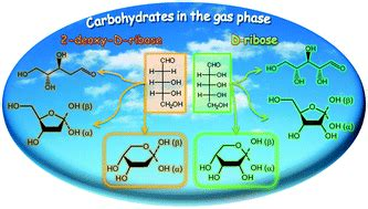 d ribose carbohydrates carbohydrates in the gas phase conformational preference