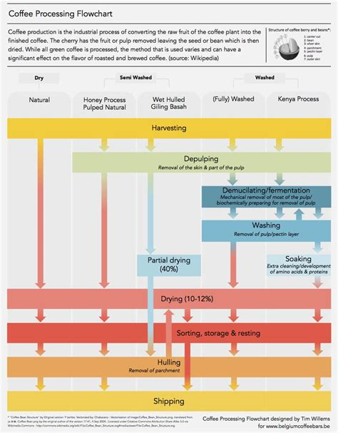 coffee flowchart 17 best images about coffee infographic on