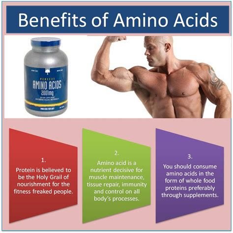 benefits of a benefits of amino acids khelmart org it s all about sports