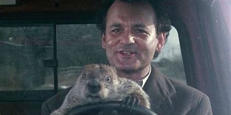 groundhog day german title 17 best images about worth again and