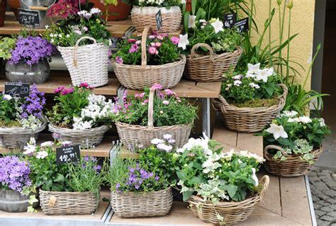 mercato fiori torino due giorni per l autunno mostra mercato fiori a torino