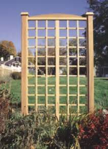 Trellis Design Plans by Wooden Trellis Designs Woodproject