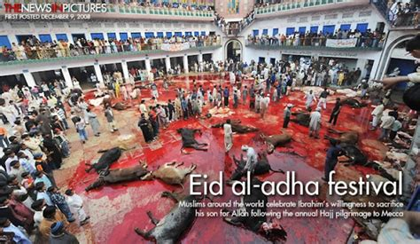 barbaric halal animal sacrifice qurbani is going on