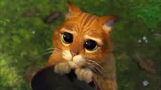 shrek cat eyes