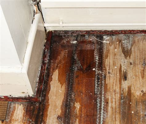 water damage floor repair orange restoration