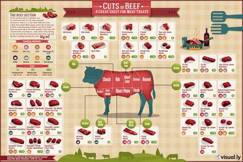 beef cuts diagram cuts of beef visual ly