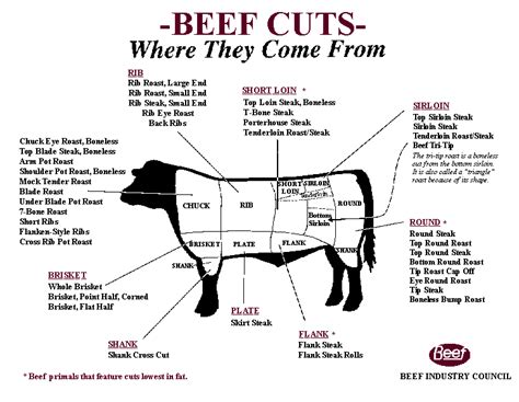 diagram of steak cuts beef cuts chart grill thrill
