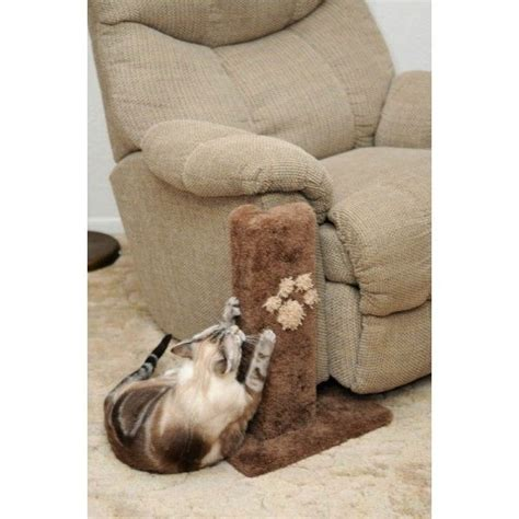couch protectors for cats best 25 scratching post for cats ideas on pinterest diy