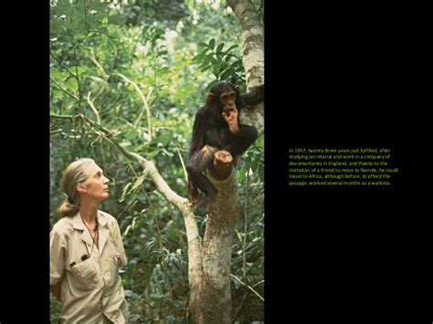 jane goodall biography in spanish jane goodall passion for life