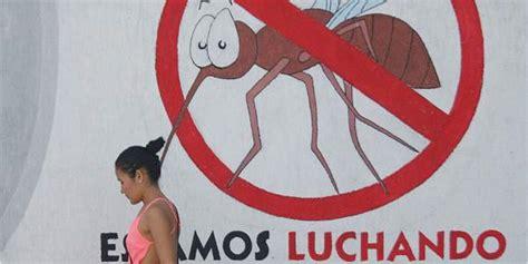 imagenes de niños con zika desmitificando el zika 13 mujeres con el virus dan a luz
