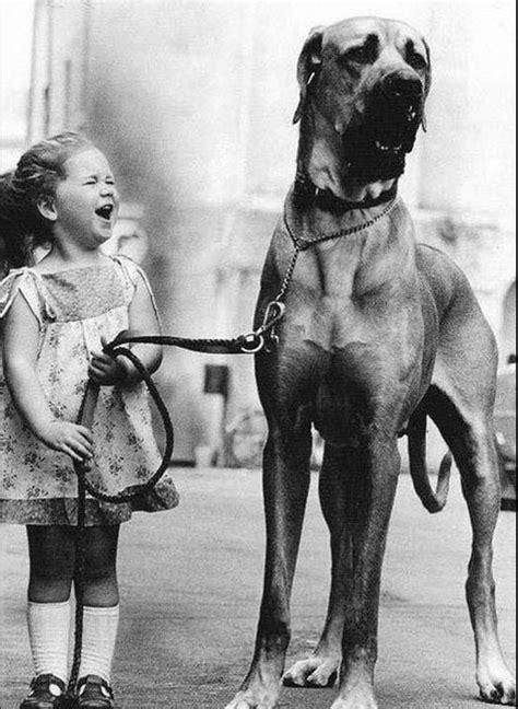 fotos antiguas en blanco y negro fotografias antiguas en blanco y negro off topic taringa