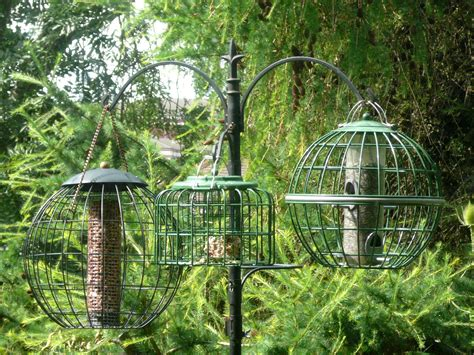 the five golden double entendres of buying a bird table
