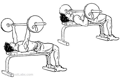 barbell bench press exercise underhand grip barbell bench press workoutlabs