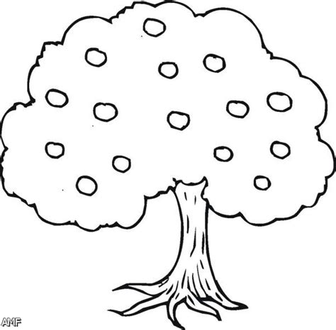 coloring pages apple tree apple tree coloring pages
