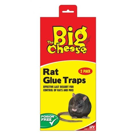 Sale Mainan Ch2114 Jimmy Mouse Cheese the big cheese rat glue trap pack at burnhills