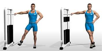 adduction machine cable hip adduction bodybuilding wizard
