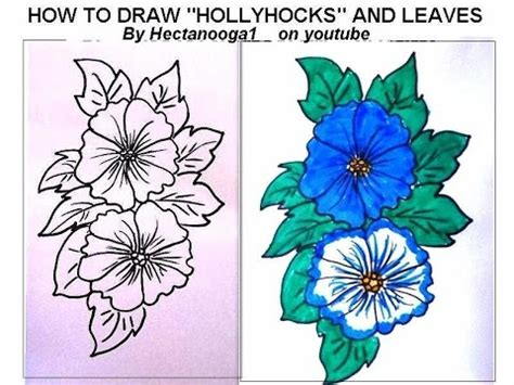 doodle flowers how to draw flowers hollyhocks drawing lessons can draw