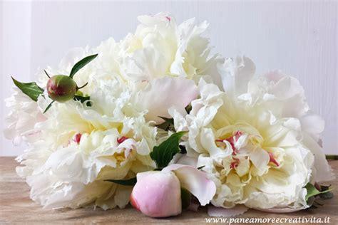 fiori te fiori fai da te le peonie