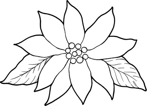 printable poinsettia template coloring home