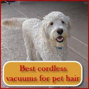 best comforter material for pet hair 17 best images about best cordless vacuum for pet hair on