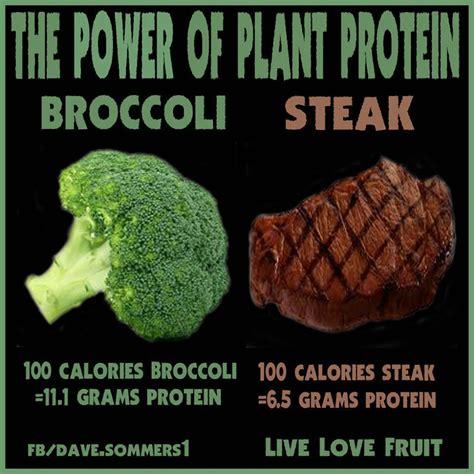 protein in broccoli steak vs broccoli meme i has a blarrrrrrrrggg