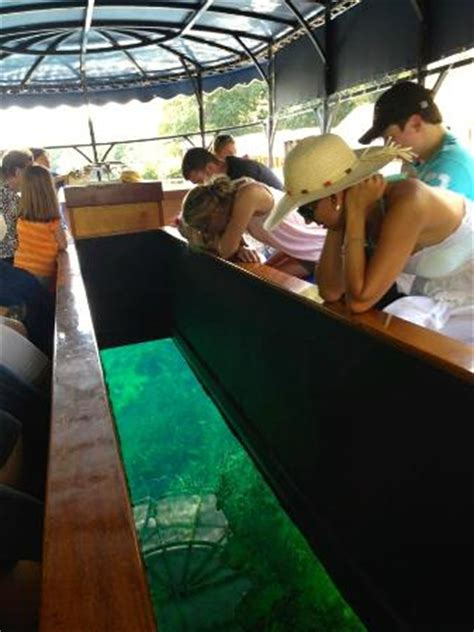 glass bottom boat san antonio glass bottom boat picture of the meadows center san