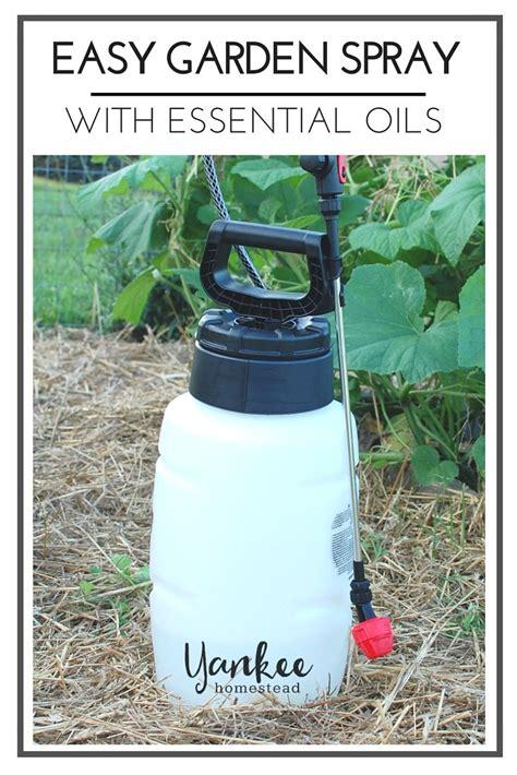 Garden Of Essential Oils Easy Garden Spray With Essential Oils Gardens