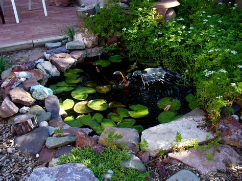 Backyard Patio Landscaping Wonderful Ornament In Small Pond Like Pool Using