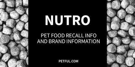 nutro food recall nutro pet food recall info petful