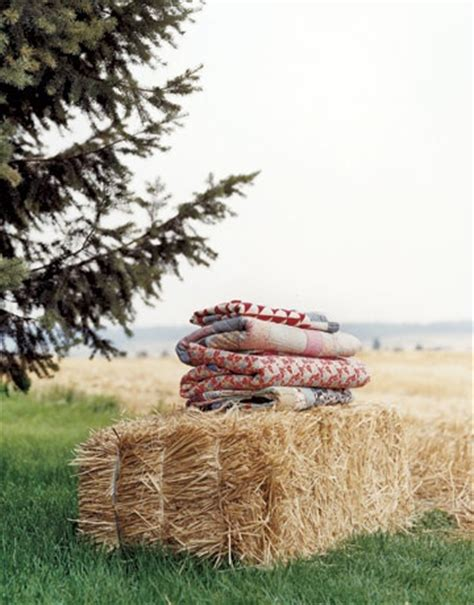 Country Comfort Pretty by 27 Best Images About Blanket On Quilt Hay Bale Seating And Summer