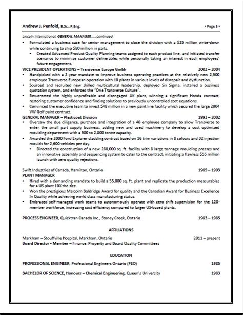 executive resume pg 3 resume writing services for professionals aneliteresume