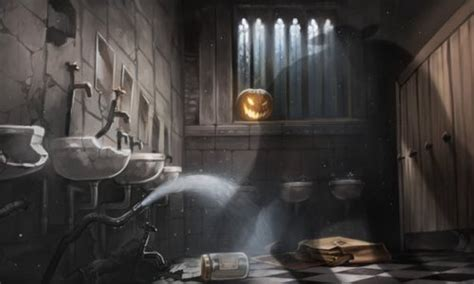 bathroom troll 5 bizarre occurrences in a hogwarts bathroom heart