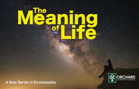 lified outreach bible paperback capture the meaning the original and hebrew books new series the meaning of ecclesiastes orchard