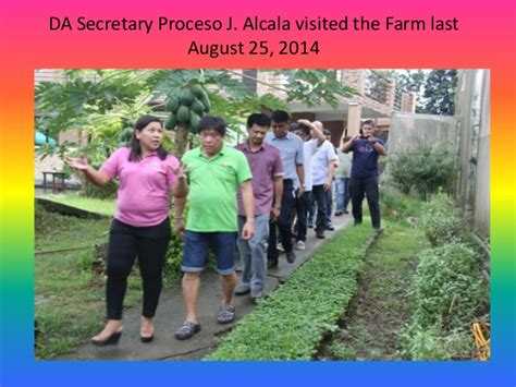 Vegi Senter duran farm the vegetable paradise of bulacan